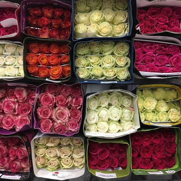 Оптовая Продажа Цветов В Москве Интернет Магазин